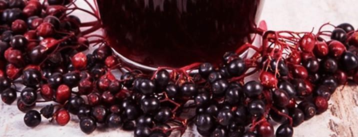 Właściwości czarnego bzu i przepis na sok